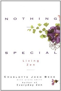 NothingSpecialBookSmall